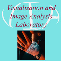 Visualization and Image Analysis image