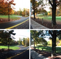 Vehicle Localization in Naturally Varying Environments image