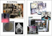 Portrait of Bioprinting