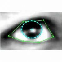 Gaze Estimation image